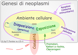 Cancer pathogenesis Italiano: Patogenesi di ne...
