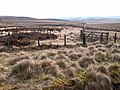 Fence line on Otterburn Ranges - geograph.org.uk - 1264145.jpg