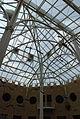 Fernbank Museum - Atlanta - Flickr - hyku (5).jpg