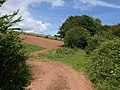 Field at Stokeley Farm - geograph.org.uk - 1358921.jpg