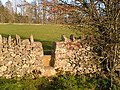 Field stile - geograph.org.uk - 285713.jpg