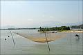 Filet de pêche (4393652437).jpg