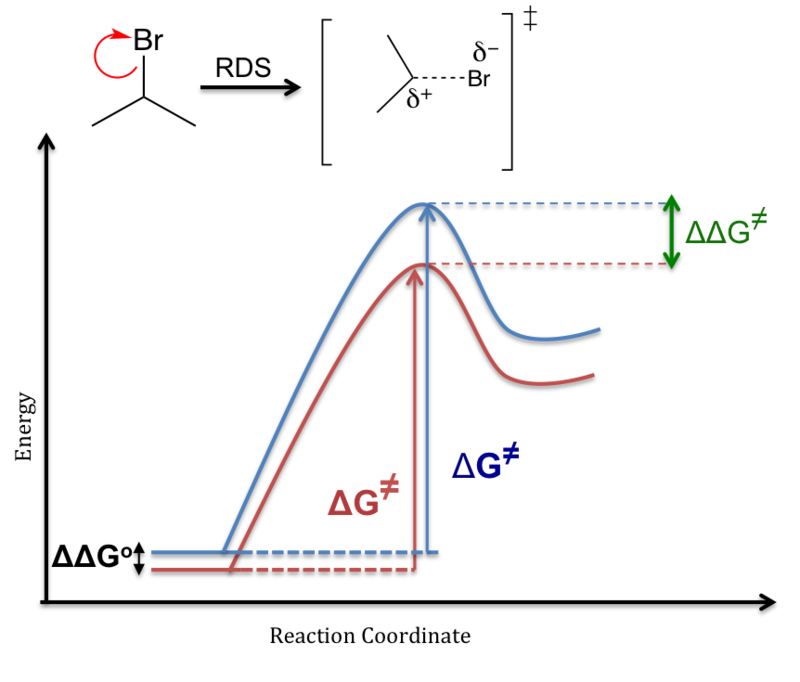 Energy Profile Chemistry Wikiwand
