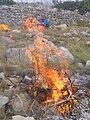Fire at Lebra hill, near Milna, Brač, Croatia.jpg