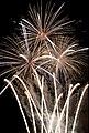 Fireworks - 20100724- DSC9155 (4831980761).jpg