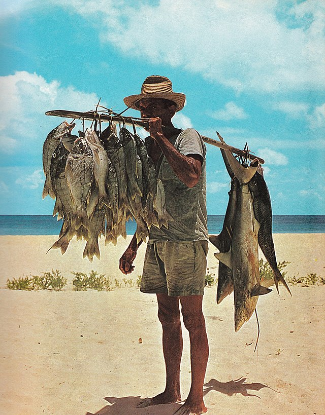 fisherman wikiwand