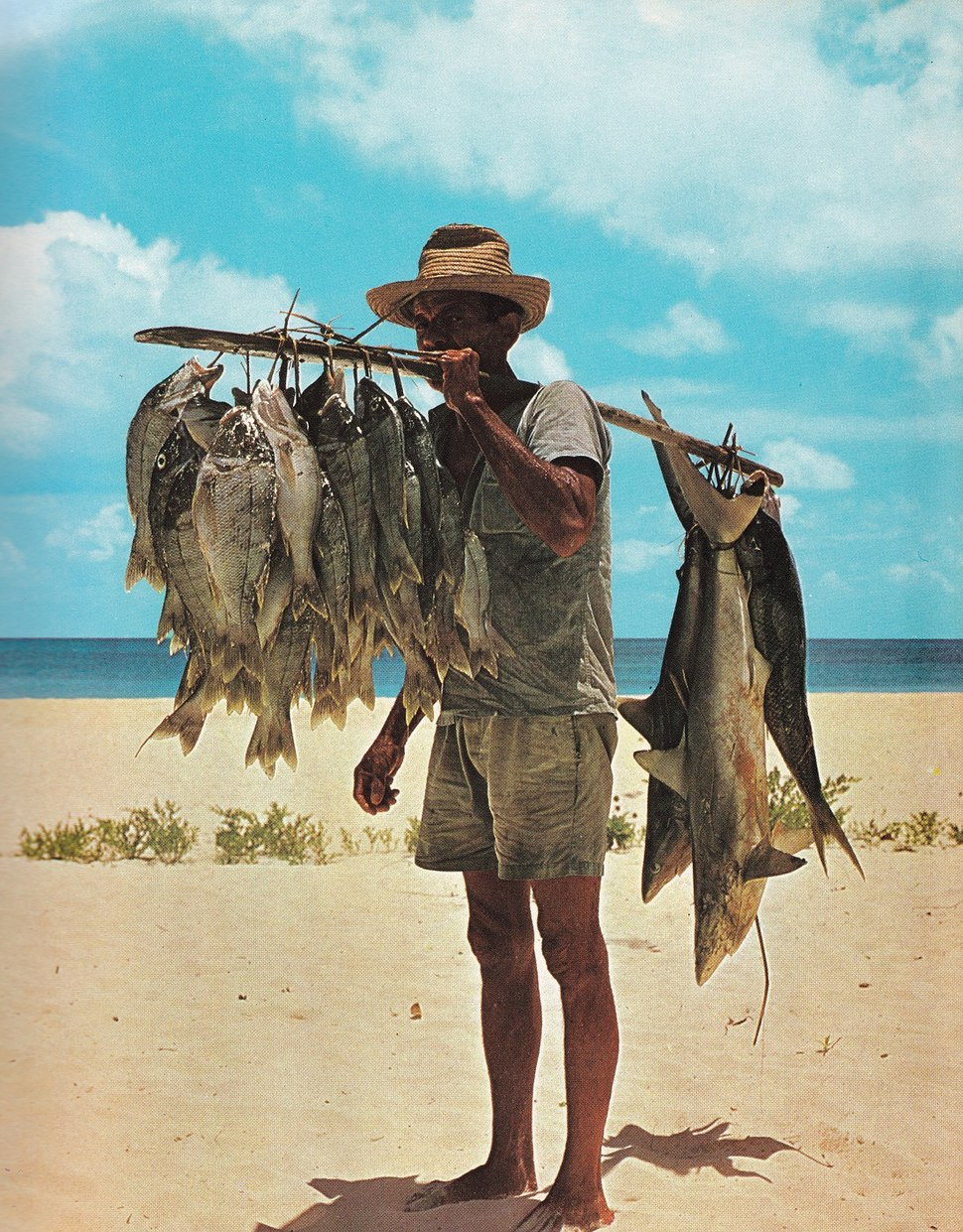 Fisherman and his catch Seychelles