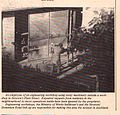 Flash- Grey Lynn, Westemere Community Newletter, Issue N0.9 1978.jpg