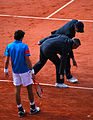 "Flickr - Carine06 - ""How many umpires does it take to..."".jpg"