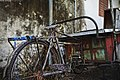 Flickr - Shinrya - Rusted out bike.jpg