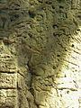 Flickr - archer10 (Dennis) - Guatemala-1316.jpg