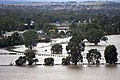 Flood waters on the Murrumbidgee flood plains in North Wagga, viewed from Franklin Drive in Estella (8).jpg