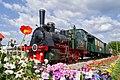 Flower Train (256646581).jpeg