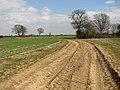 Footpath across fields - geograph.org.uk - 1767817.jpg