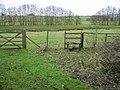 Footpath across marshy land near Horton Priory - geograph.org.uk - 644674.jpg