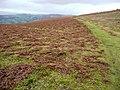 Footpath to Aberedw Hill - geograph.org.uk - 669117.jpg