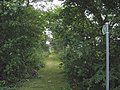 Footpath to the B 4422 - geograph.org.uk - 887490.jpg