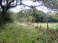 Footpath towards Mill Copse - geograph.org.uk - 601008.jpg