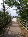 Footpath towards Outney Common - geograph.org.uk - 2067081.jpg