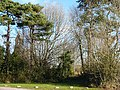 Former parish church, Coedkernew - geograph.org.uk - 630686.jpg
