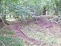 Fort, Mistleberry Wood - geograph.org.uk - 848563.jpg