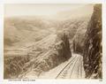 Fotografi från bergen i Libanon - Hallwylska museet - 104293.tif