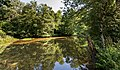 Frauenstein Schloss Frauenstein Schlossteich SW-Ansicht 15082019 6949.jpg
