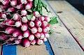 Fresh radishes (Unsplash).jpg