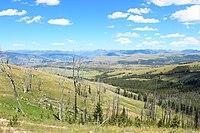 From Chittenden Road, Mt. Washburn, Yellowstone NP - panoramio - Aaron Zhu.jpg