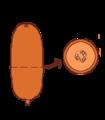 Fruit morphology pepo.png