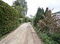 FrzBuchholz (13)Silberapfelweg West.JPG