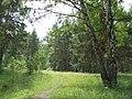 G. Miass, Chelyabinskaya oblast', Russia - panoramio (38).jpg