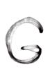 G image 59.png