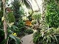 Gaiser Conservatory (Manito Park) - IMG 6982.JPG