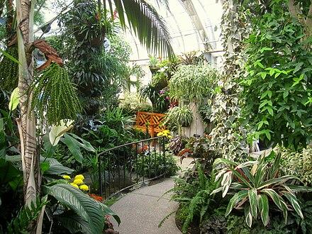 Manito Park And Botanical Gardens Wikiwand