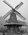 Galerieholländerwindmühle 02.jpg