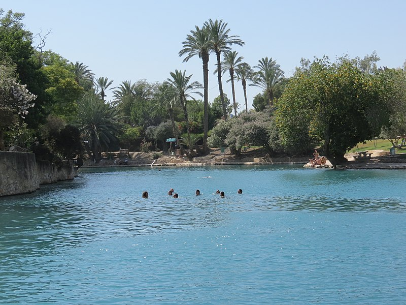 people swimming in the blue pools