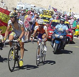 Tony Martin (cyclist) - Martin (left) riding on Mont Ventoux at the 2009 Tour de France