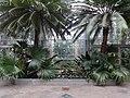 Garden Court - US Botanic Gardens 25.jpg
