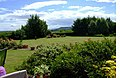 Garden Orchard and Hills - panoramio.jpg