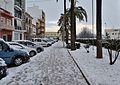 Gata, passeig d'Alacant amb neu.jpg