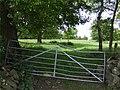 Gate into Rough Intake - geograph.org.uk - 454730.jpg