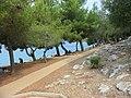 Gavza beach - panoramio.jpg