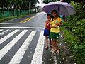 GeneralEmilioAguinaldo,Bixa orellanajf9216 11.JPG