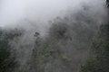 Genting Highlands, Pahang, Malaysia - panoramio (5).jpg