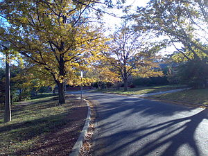 Campbell, Australian Capital Territory - A view of Getting Crescent, Campbell, in mid-autumn