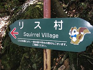 Mount Kinka (Gifu) - To the Squirrel Village!