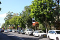 Glebe-Point-Road-View.jpg