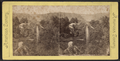 Glen Iris Park, Portage, N.Y, from Robert N. Dennis collection of stereoscopic views.png
