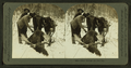 Glory enough for one day, from Robert N. Dennis collection of stereoscopic views.png